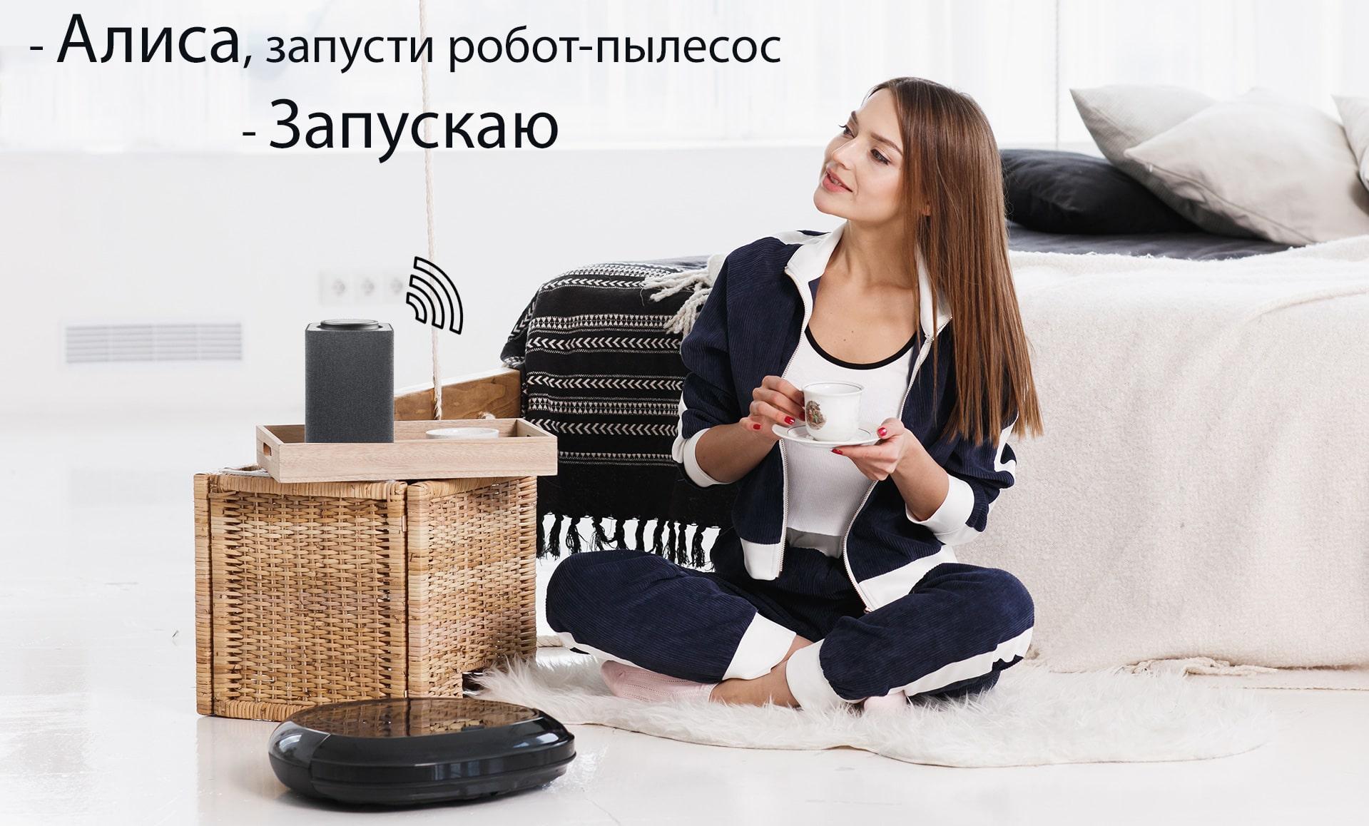 Интеграция с Яндекс.Алиса